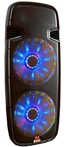Dual 15 inch DJ Speaker, Adkins Professional Audio, ELA215P-LED